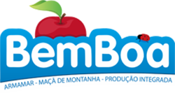 RW06-BEMBOA